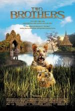 İki Kardeş (2004) afişi