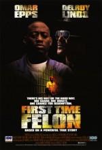 İlk Suç (1997) afişi