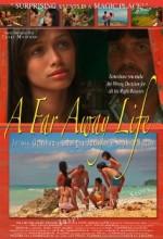 A Far Away Life (2010) afişi