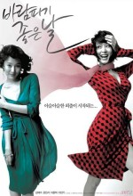 A Good Day To Have An Affair (2007) afişi