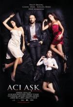 Acı Aşk (2009) afişi