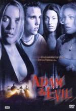Adam & Evil (2004) afişi