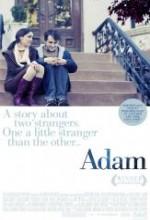 Adam (2009) afişi