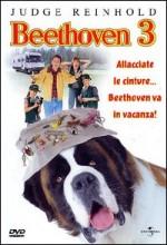Afacan Köpek Beethoven 3