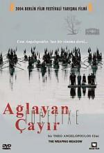 Ağlayan Çayır (2005) afişi