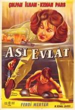 Asi Evlat (1958) afişi