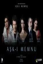 Aşk-ı Memnu (2008) afişi