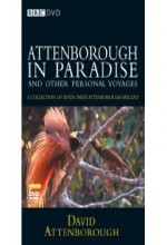 Attenborough In Paradise (1996) afişi