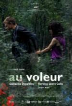 Au Voleur (2009) afişi