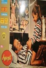 Ayşegül (1971) afişi