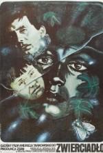 Ayna (1975) afişi