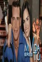 Bir Aşk Masalı (2006) afişi
