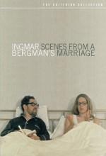 Bir Evlilikten Manzaralar (1973) afişi