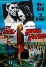 Bir Türke Gönül Verdim (1969) afişi