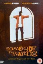 Birisi Bekliyor (1996) afişi