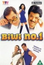 Biwi No. 1 (1999) afişi