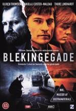 Blekingegadebanden (2009) afişi