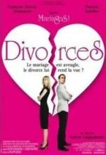 Boşanmalar (2009) afişi