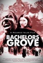 Bachelors Grove (2014) afişi