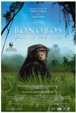 Bonobos: Back to the Wild (2015) afişi