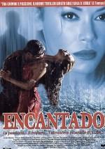 Büyülü Yolculuk (2002) afişi