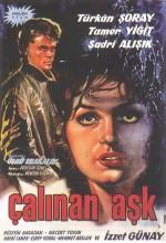 Çalınan Aşk (1963) afişi