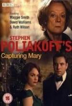 Capturing Mary (2007) afişi
