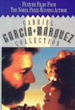 Cartas Del Parque (1989) afişi