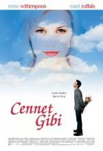 Cennet Gibi (2005) afişi