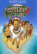 Christmas Vacation 2: Cousin Eddie's ısland Adventure (2002) afişi