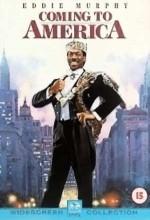 Amerikan Rüyası (1988) afişi