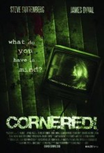 Cornered! (2008) afişi