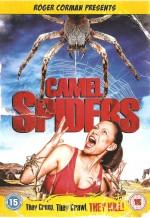 Camel Spiders (2011) afişi
