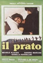Çayır (1979) afişi