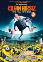 Çılgın Hırsız (2010) afişi