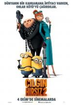 Çılgın Hırsız 2 (2013) afişi
