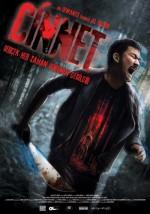 Cinnet (2012) afişi