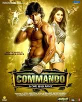 Commando (2013) afişi