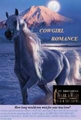 Cowgirl Romance (2013) afişi