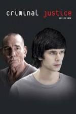 Criminal Justice (2013) afişi