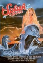 Denizkızı (ı) (1988) afişi