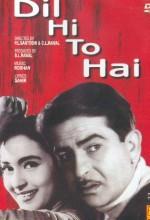 Dil Hi To Hai (1963) afişi