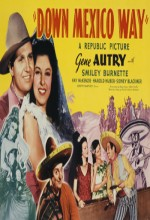 Down Mexico Way (1941) afişi