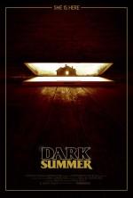 Karanlık Yaz (2015) afişi