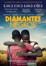 Diamantes negros (2013) afişi