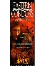 Eastern Condors (1987) afişi