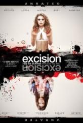 Eksizyon (2012) afişi