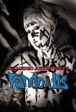 Fando Y Lis (1968) afişi