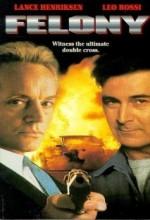 Felony (1994) afişi