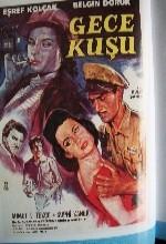 Gece Kuşu (1960) afişi